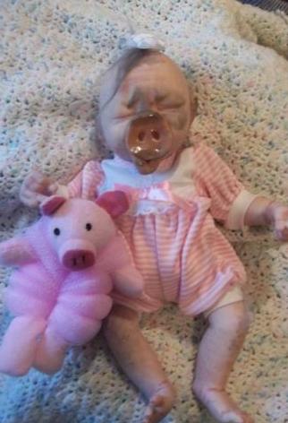 pig.baby.hybrid