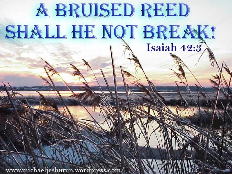 Isaiah 4
