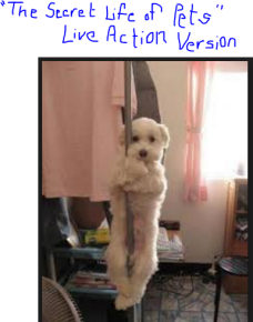Secret Life of Pets Live Action Version
